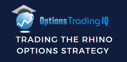 optionstradingiq.com